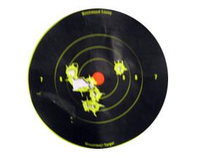 Sig Pro Target