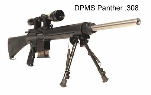 DPMS Panther 308