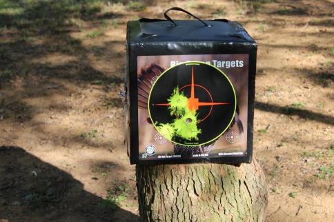 7_Target